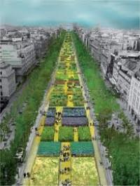 Nature Capitale : Immense succès de l'opération sur les champs... Elysées