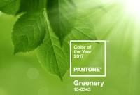 Vert couleur de l'année 2017 selon Pantone