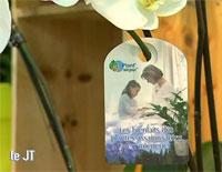 Plant'airpur et le salon du végétal sur Angers 7