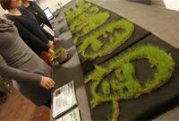 Print Green : l'imprimante 3D végétale