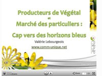 Le marché des particuliers et les végétaux